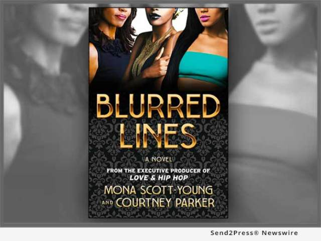 Book: Blurred Lines a Novel