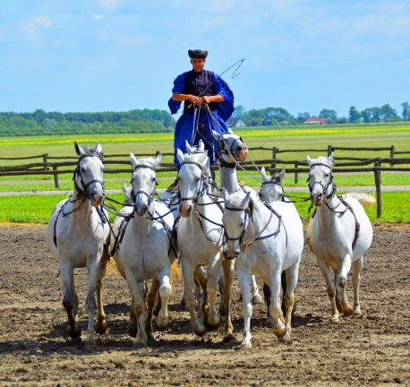 """""""The Horsemen of the Puszta,"""" is a fantastic demonstration of horsemanship in Hungary."""