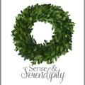 Sense & Serendipity