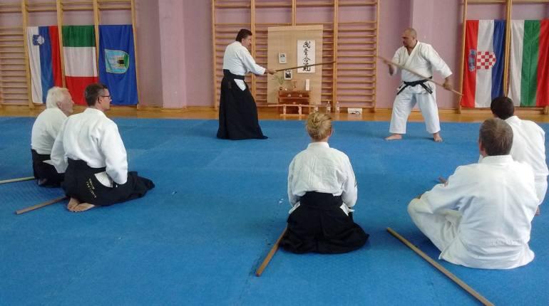 Aikido-Corallini