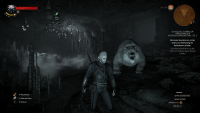 Witcher 3 -  In der Höhle des Eisbären