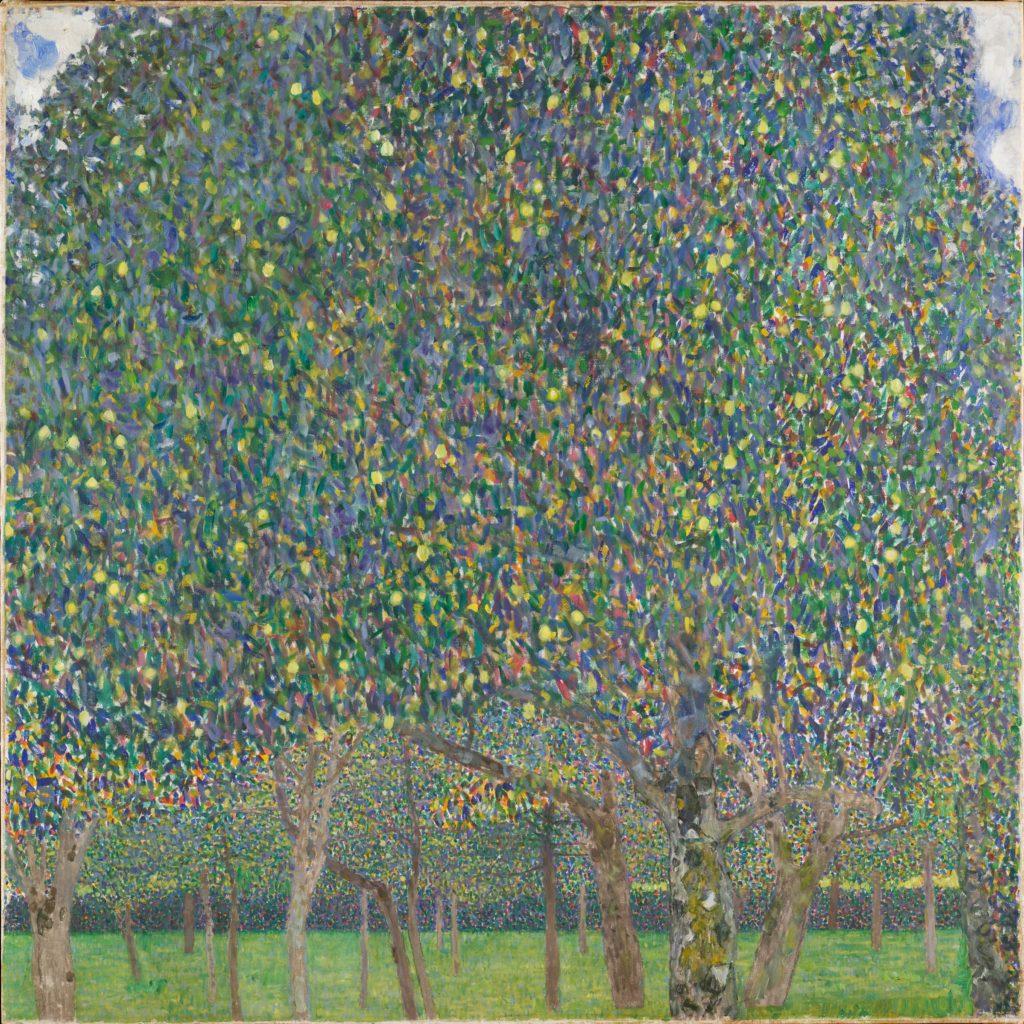 Pear Tree - 1903