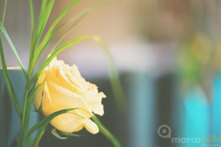 Blumen Kirchenbank Hochzeit