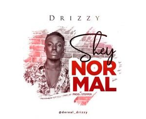 Drizzy – Shey Normal
