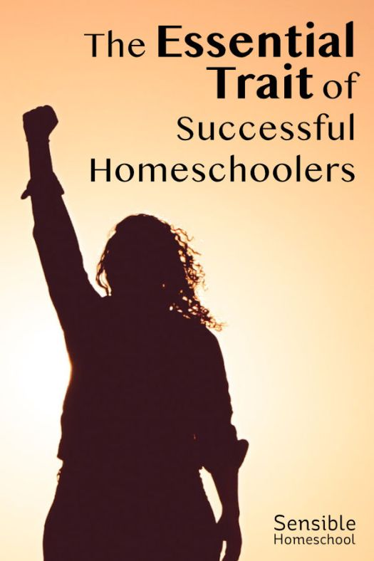 The Essential Trait of Successful Homeschoolers resourceful homeschooler's silhouette on orange background