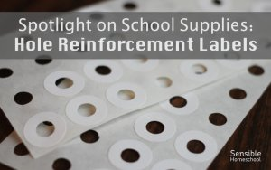 Spotlight on School Supplies Hole Reinforcement Label sheets