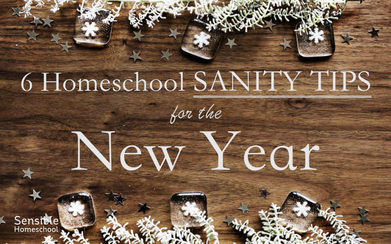 6 homeschool sanity tips for the new year on wood background with snowflake decor
