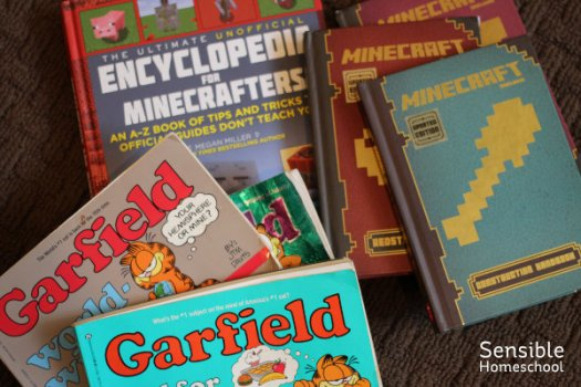 Assortment of Garfield and Minecraft books