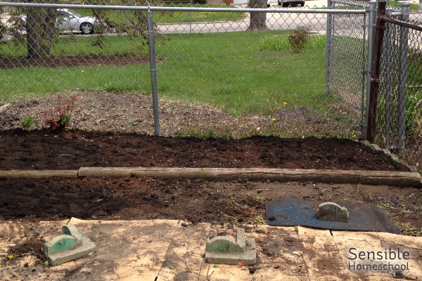 Small, empty, messy garden bed in front of chainlink fence