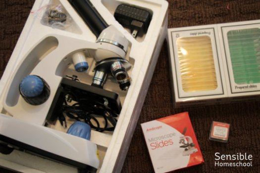 Homeschool science microscope and slides