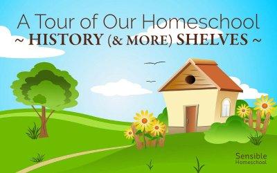 A Tour of Our Homeschool History (& More) Shelves