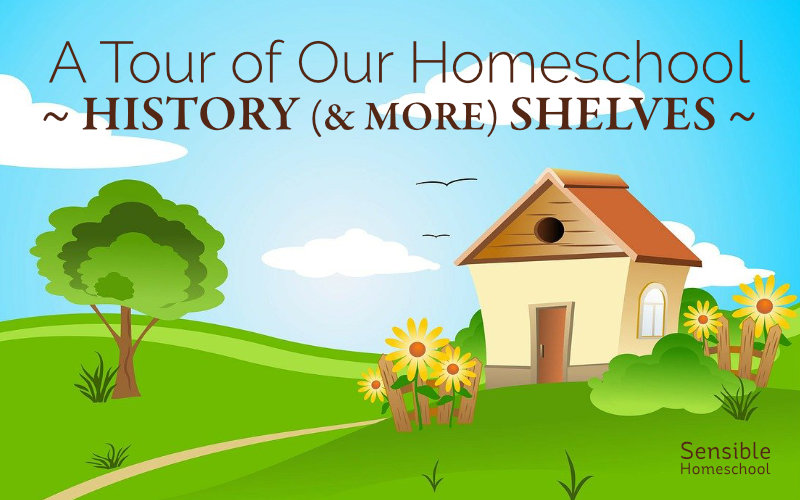 A Tour of Our Homeschool History (& More) Shelves