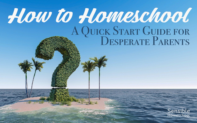 How to Homeschool - A Quick Start Guide for Desperate Parents