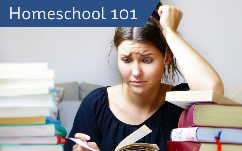 Homeschool 101 header - mom with books