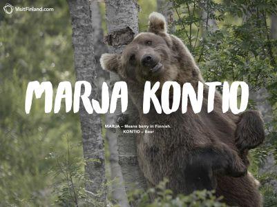 marja-kontio-2en