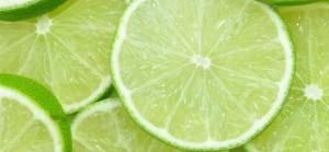 00ea1ce6c9a0c6a0_Lime-Slices_jpg_xxxlarge_2x