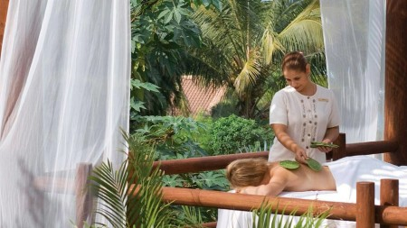 Cactus massage