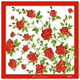 Rosa-78-500x500