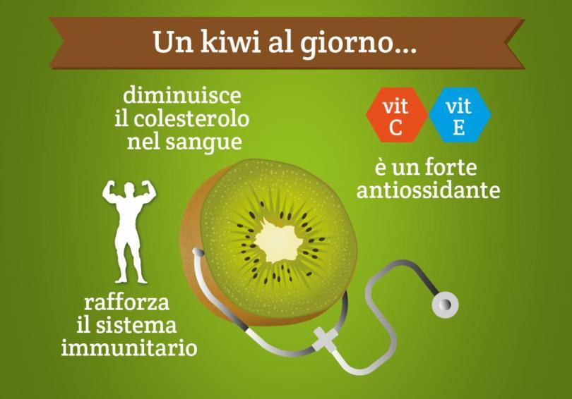 kiwi-di-latina-igp-07
