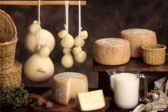Cremona Formaggi&Sorrisi 1