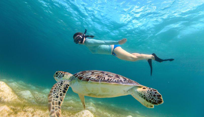 Giornata_ Mondiale_ Oceani