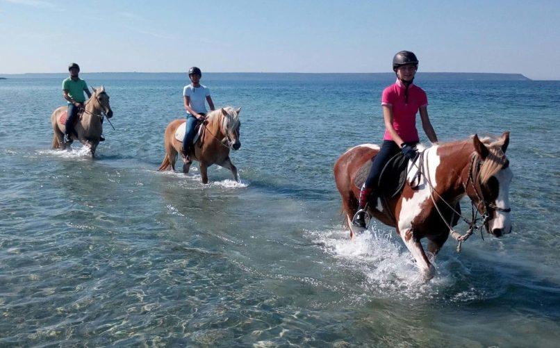 Horse Country Resort - Passeggiata in acqua