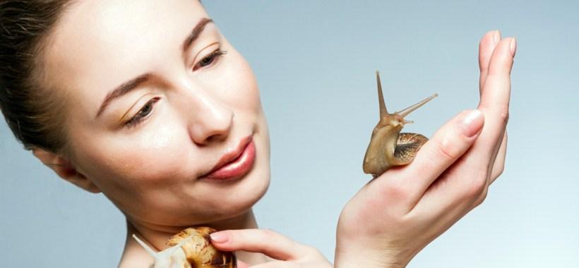 Il Futuro è Chiocciola!A Cherasco tra elicicoltura e Snail Therapy