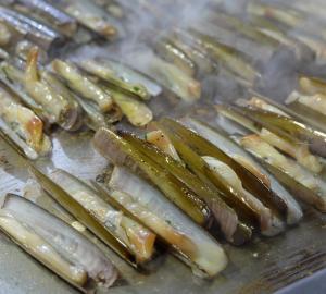 Lignano Sabbiadoro: il miglior pesce inaugura la stagione 2020