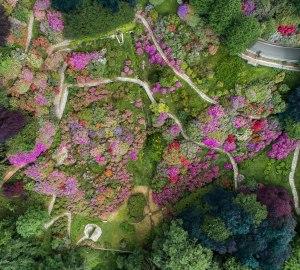 Oasi Zegna: sognando la fioritura nella conca dei rododendri