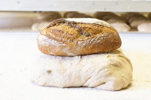 pan-bianch-levoluzione-del-pane-e-il-panettone-pinerolese