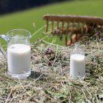 salute-a-tavola-con-latte-e-suoi-derivati
