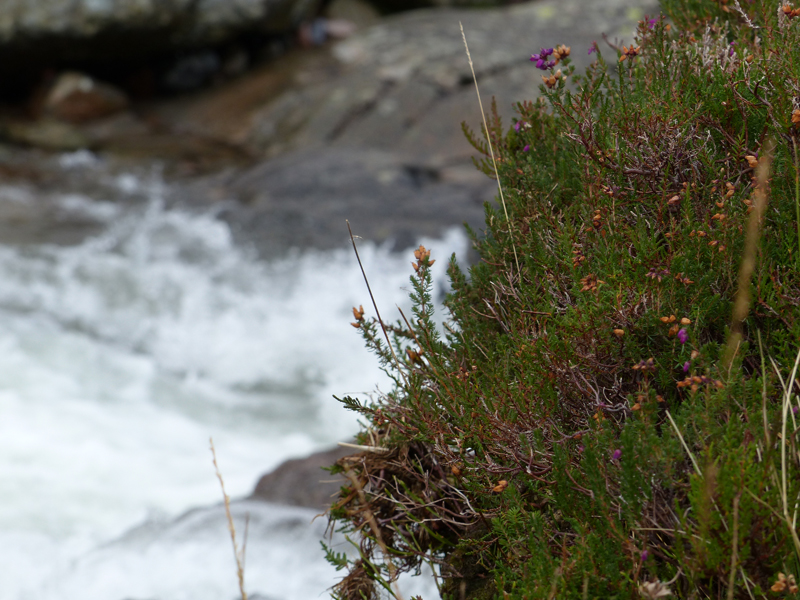 Road trip en Ecosse: Glencoe