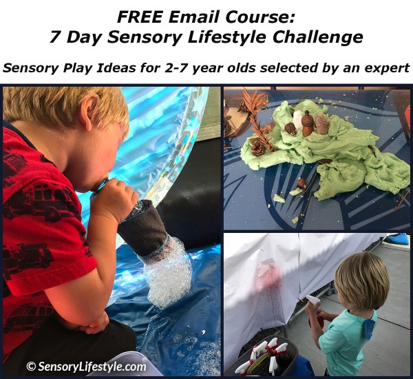 Sensory Lifestyle Challenge 2-7