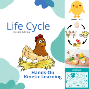 Life Cycle Curriculum Kits