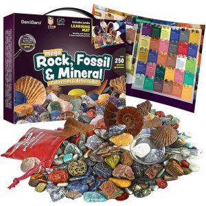 rock fossil mineral science kit