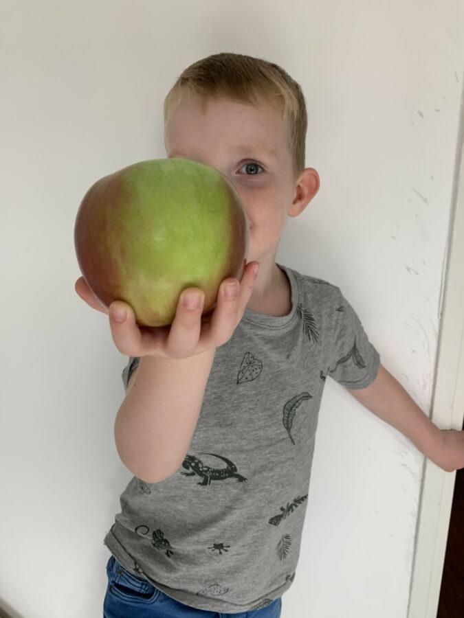 Mijn leven in foto's #145 - Appels