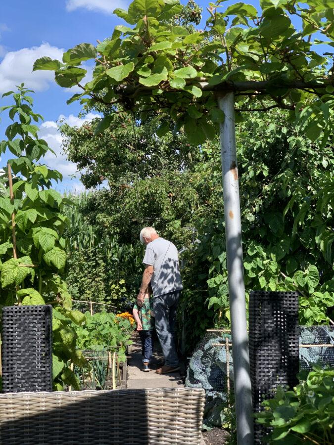 Mijn leven in foto's #127 - Interview over de Tunnels van Leerdam, genieten van mooi weer en plantjes groeien goed
