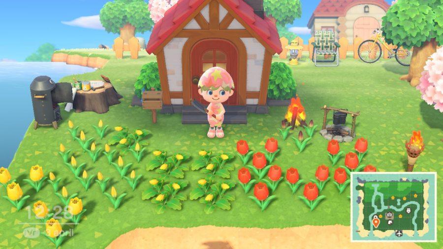 Animal Crossing - New Horizons - mijn huis