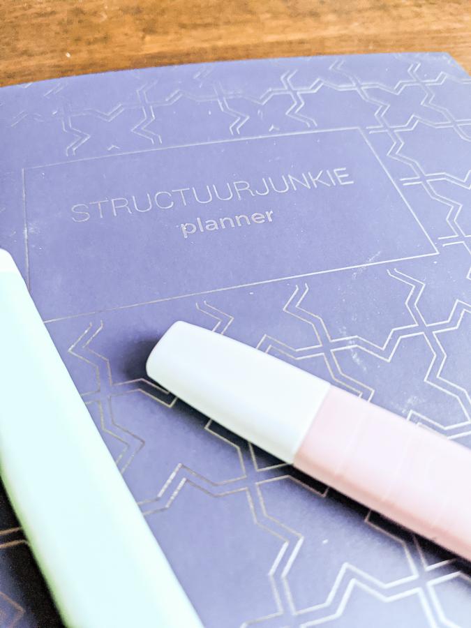 De planning van Nienke Zomer