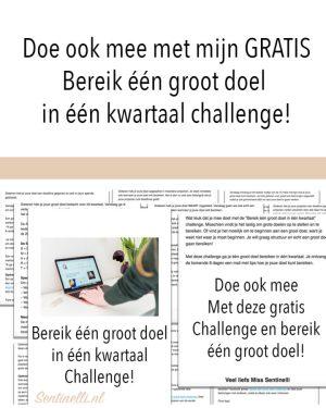 Doe ook mee met mijn GRATIS Bereik één groot doel in één kwartaal challenge!