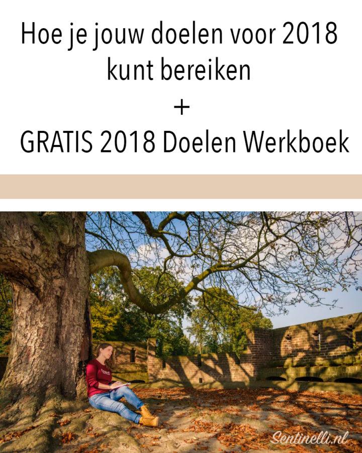 Hoe je jouw doelen voor 2018 kunt bereiken + GRATIS 2018 Doelen Werkboek