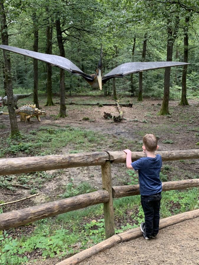 Onze vakantie in Luxemburg - Dinosaurierpark