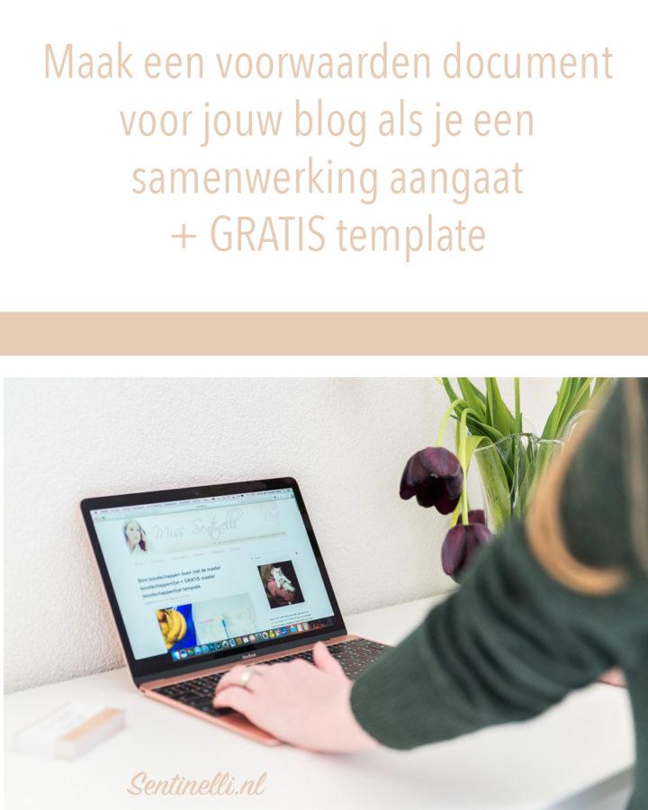 Maak een voorwaarden document voor jouw blog als je een samenwerking aangaat + GRATIS template