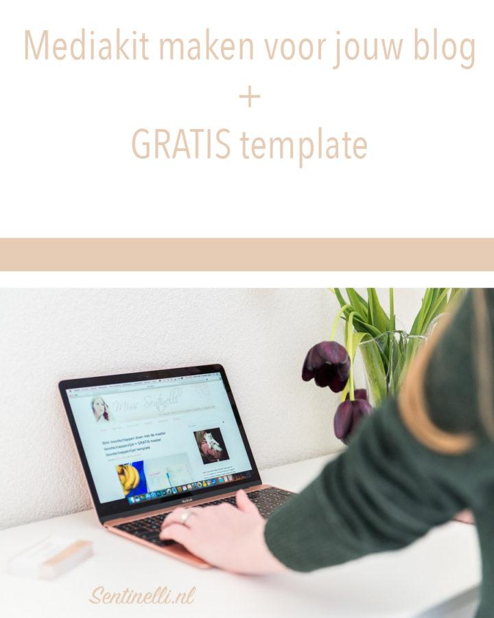 Mediakit maken voor jouw blog GRATIS template