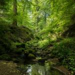 Kasteel van Vianden, Romeinse overblijfselen en prachtige natuur van Luxemburg!
