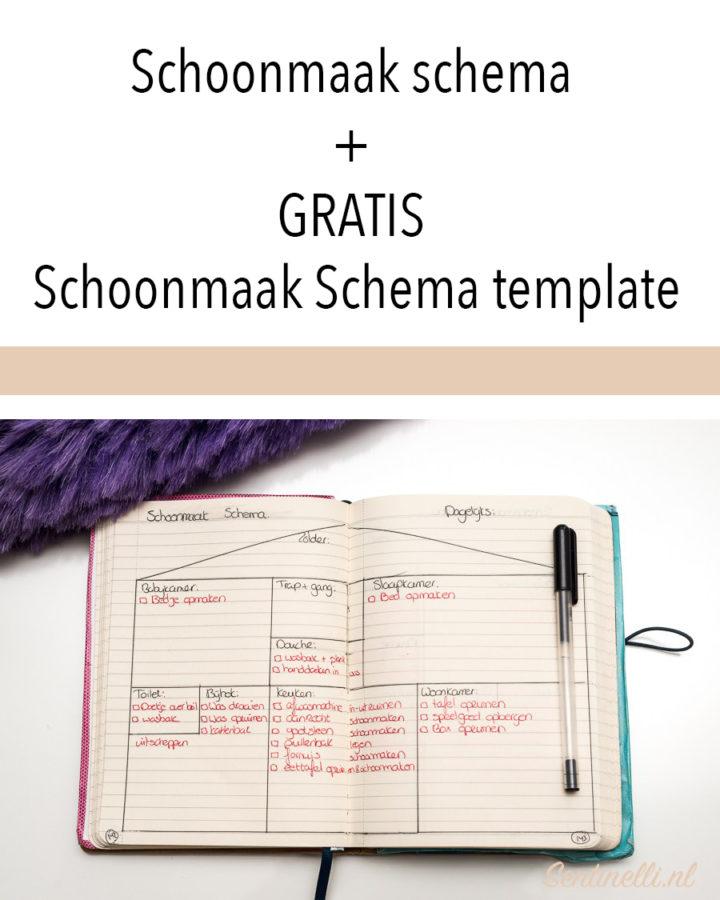 Schoonmaak schema + GRATIS Schoonmaak Schema template