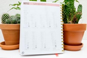Sparen update juni – Hoeveel hebben we deze maand kunnen sparen?