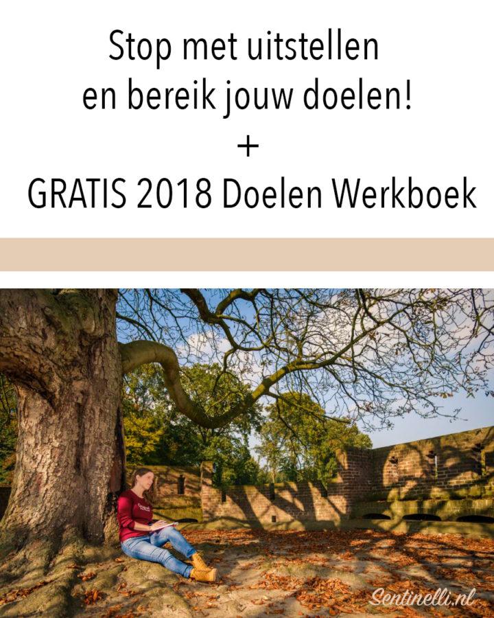 Stop met uitstellen en bereik jouw doelen! + GRATIS 2018 Doelen Werkboek