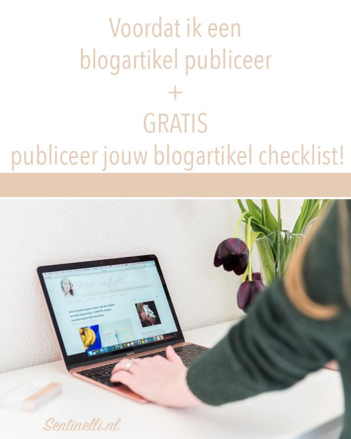 Voordat ik een blogartikel publiceer GRATIS publiceer jouw blogartikel checklist