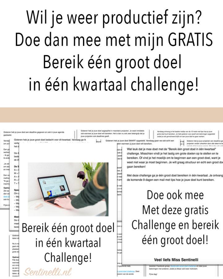 Wil je weer productief zijn? Doe dan mee met mijn GRATIS Bereik één groot doel in één kwartaal challenge!